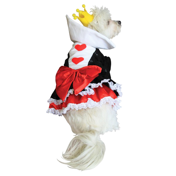 Queen of Hearts dog costume