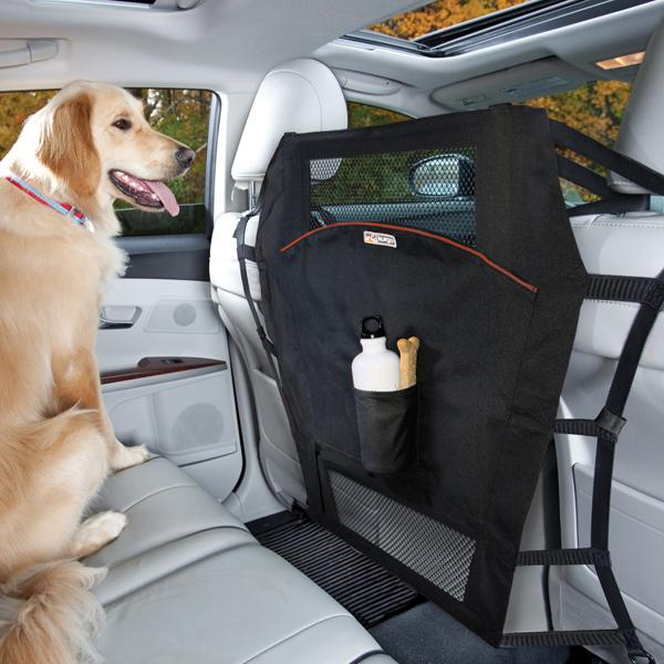 NJ Click It or Ticket Law Applies to Pets Too | BaxterBoo