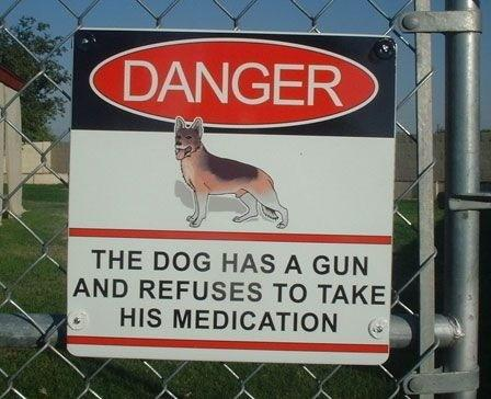 Dog with Gun Dog Sign