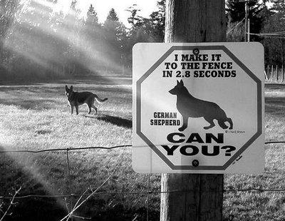 fence in 2.8 Dog Sign