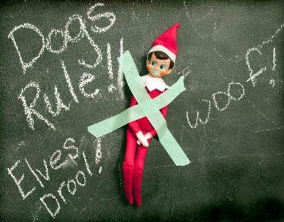 Holiday Pet Pictures Make the Season Bright | BaxterBoo