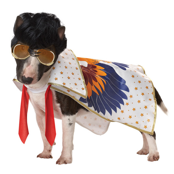 You Ain't Nothin' But a Hound Dog Costume