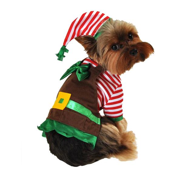 Workshop Elf OR First Mate? You decide!